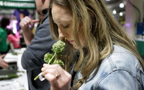 9 Women-Owned Cannabis Businesses Killing It in California