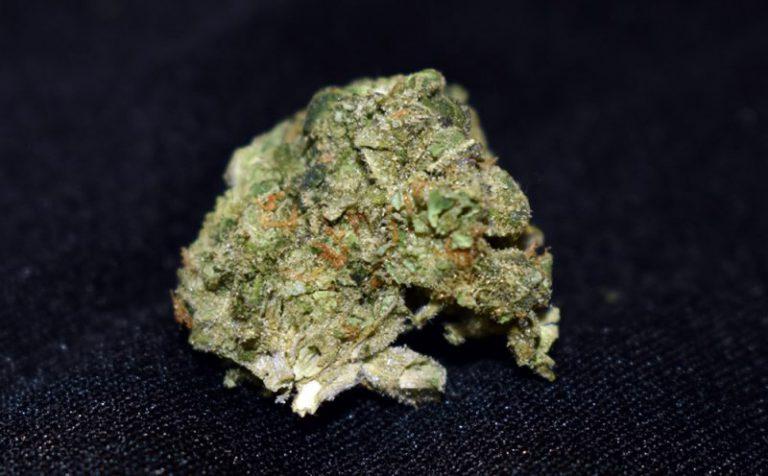 Cherry Diesel (marijuana review)