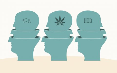 Many Medical Applications of Cannabis